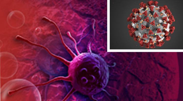 Asnjë pacient i sëmurë me kancer nuk ka vdekur nga COVID- 19