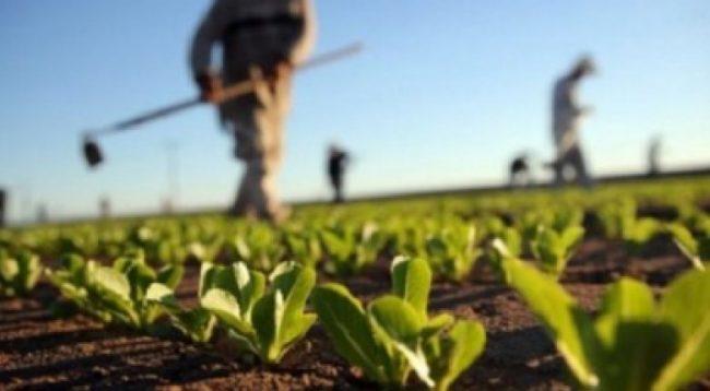 Bie çmimi i mallrave dhe shërbimeve bujqësore