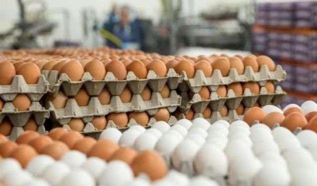 Rritet çmimi i grurit dhe i vezëve në Kosovë